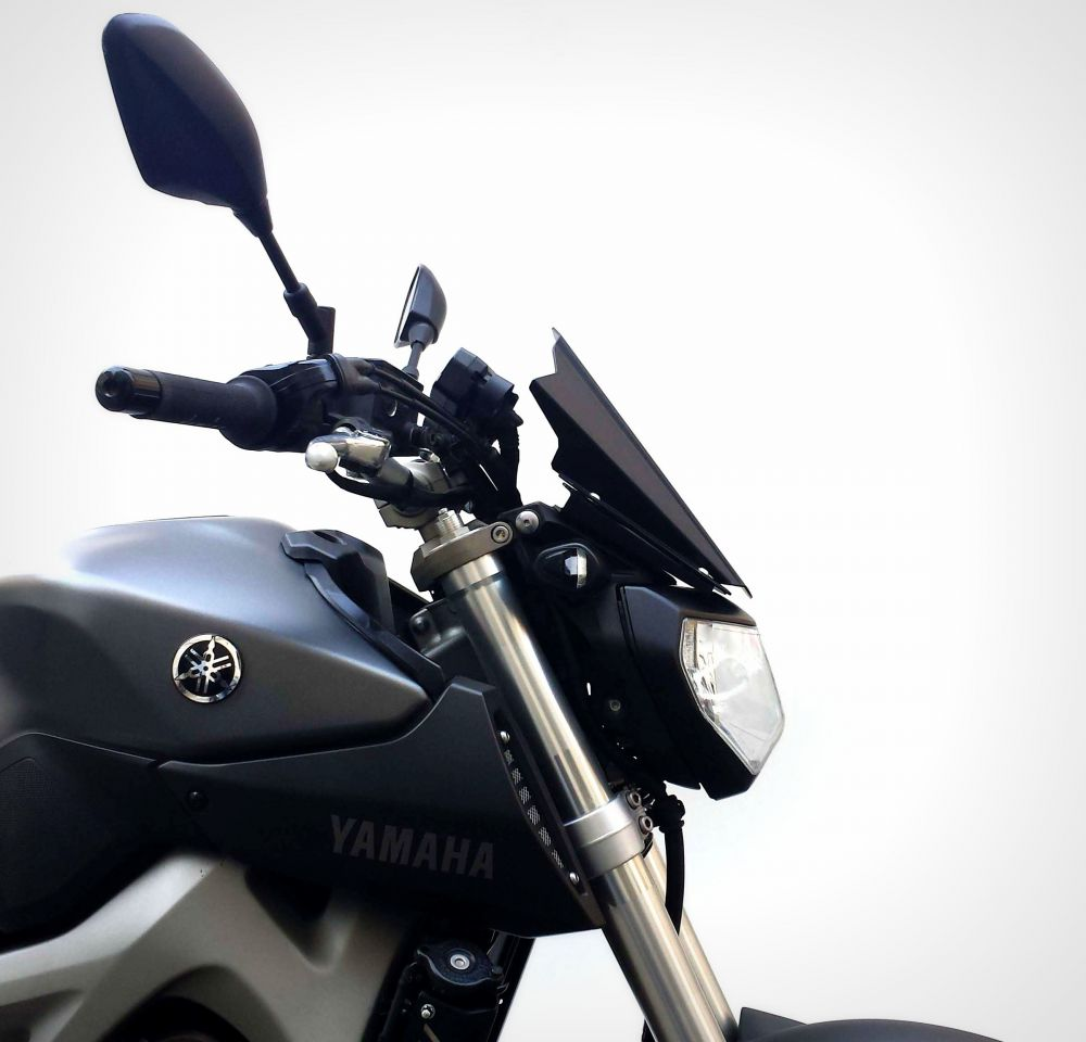 Cupolino aria Race Line Yamaha MT-09